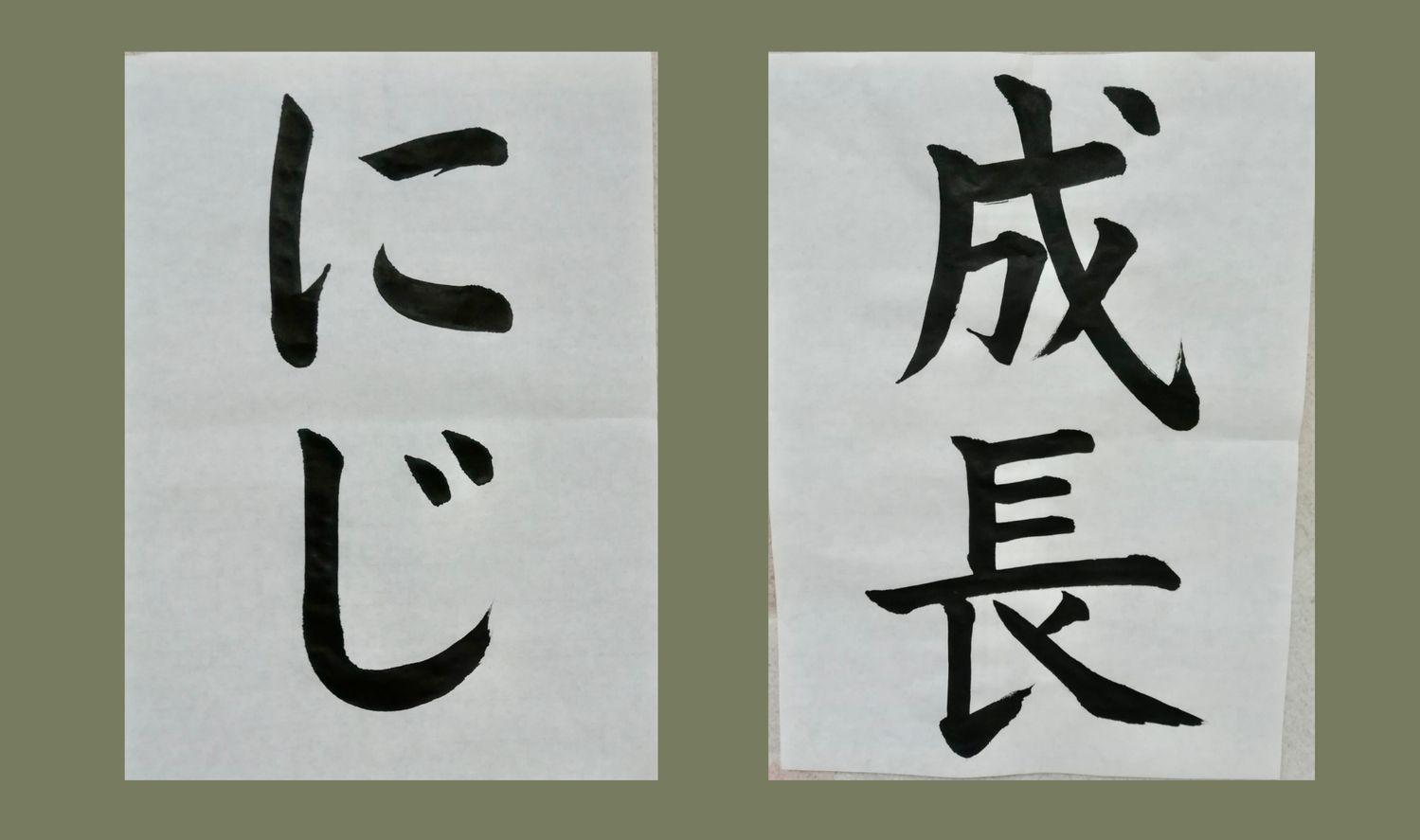 尾崎 美和子